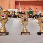 Trofeje pro vítězné týmy.